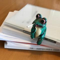 イメージ画像としてカエルとファイル